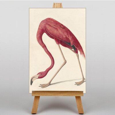 Big Box Art Flamingo by John James Graphic Art on Canvas