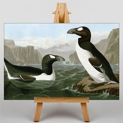 Big Box Art Audubon Penguins by John James Graphic Art on Canvas