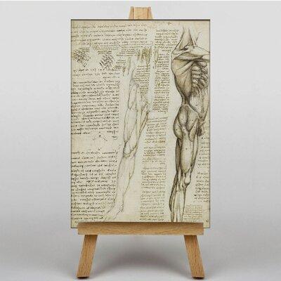 Big Box Art Anatomy by Leonardo Da Vinci Art Print on Canvas