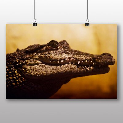 Big Box Art Alligator Graphic Art Wrapped on Canvas