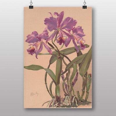 Big Box Art 'Purple Flowers' by Alice Bailly Art Print