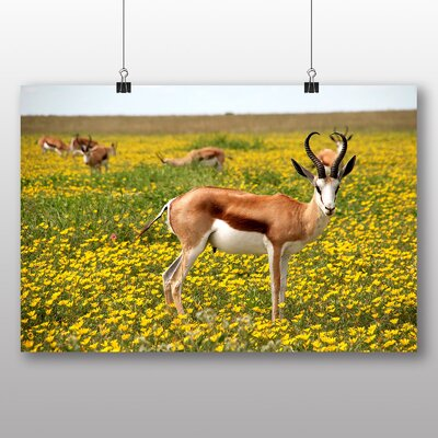 Big Box Art Antelope Photographic Print