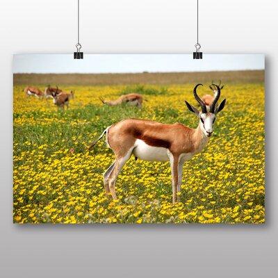 Big Box Art Antelope Photographic Print on Canvas