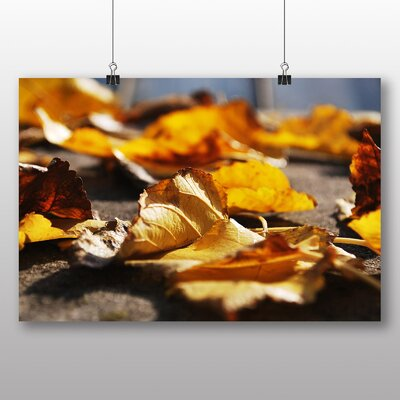 Big Box Art Autumn Leaves Photographic Print on Canvas