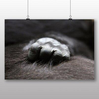 Big Box Art Baby Gorilla Photographic Print Wrapped on Canvas