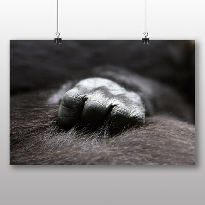 Big Box Art Baby Gorilla Photographic Print