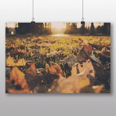 Big Box Art 'Autumn Leaves on the Grass' Photographic Print