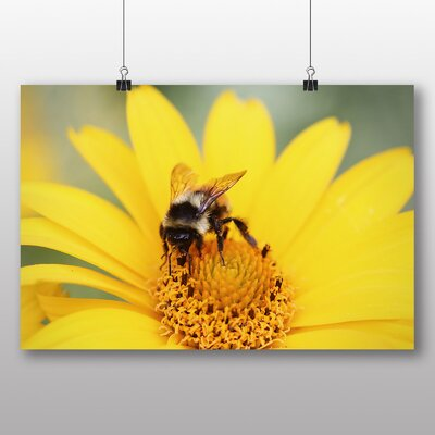 Big Box Art 'Bee Collecting Pollen from a Flower No.1' Photographic Print