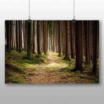 Big Box Art Beautiful Forest Wood No.1 Photographic Print Wrapped on Canvas
