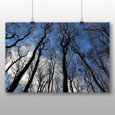 Big Box Art Beautiful Forest Wood No.5 Photographic Print Wrapped on Canvas
