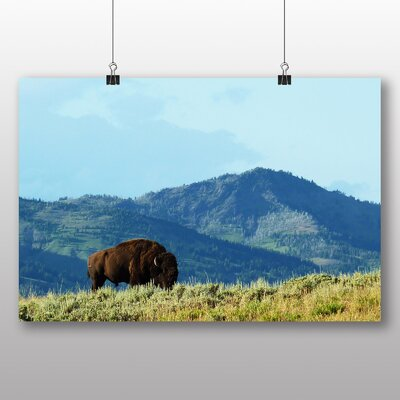 Big Box Art Bison in Wisconsin USA Photographic Print on Canvas