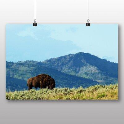 Big Box Art Bison in Wisconsin USA Photographic Print