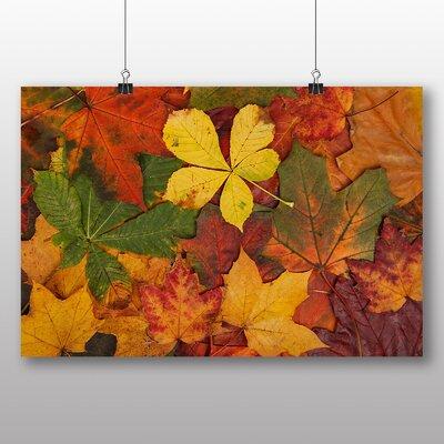 Big Box Art Autumn Leaves No.2 Photographic Print on Canvas