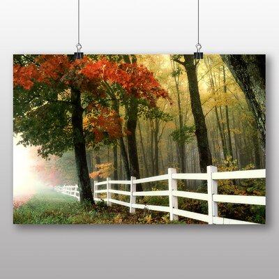 Big Box Art Autumn Forest Wood No.1 Photographic Print on Canvas