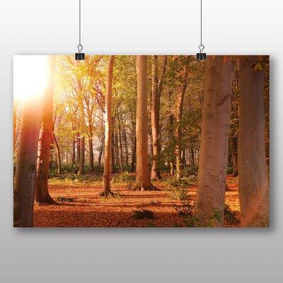 Big Box Art Autumn Forest Wood No.3 Photographic Print on Canvas