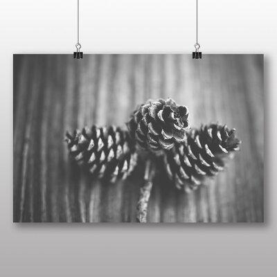 Big Box Art Acorns Photographic Print Wrapped on Canvas