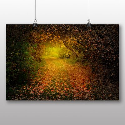 Big Box Art Autumn Forest Wood No.6 Photographic Print Wrapped on Canvas