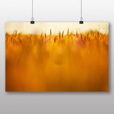 Big Box Art 'Blurred Crops in the Summer' Photographic Print