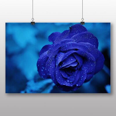 Big Box Art Rose Flower No.2 Photographic Print on Canvas