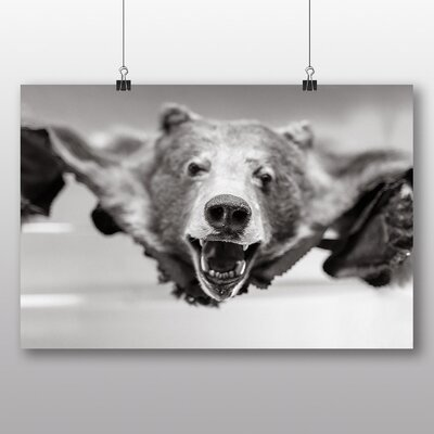 Big Box Art 'Bear Skin' Photographic Print