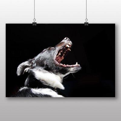 Big Box Art 'barking Dog' Photographic Print