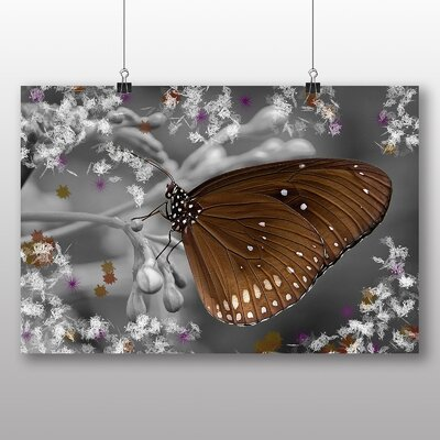 Big Box Art Butterfly No.3 Graphic Art on Canvas