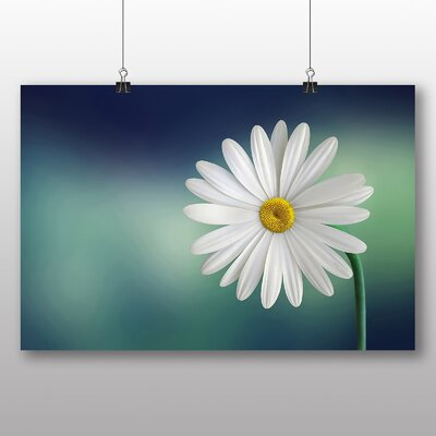 Big Box Art Beautiful Daisy Photographic Print on Canvas