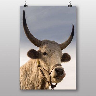 Big Box Art 'Bull Cow No.2' Photographic Print
