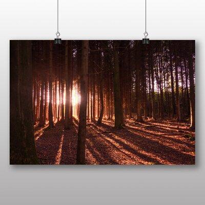 Big Box Art Beautiful Forest Wood No.7 Photographic Print on Canvas