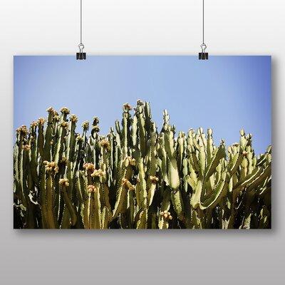 Big Box Art 'Cactus Cacti in Spain' Photographic Print