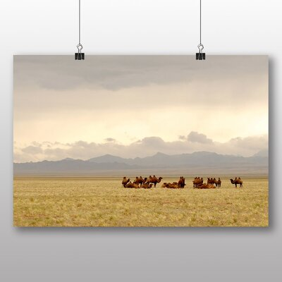Big Box Art Camels Resting Gobi Mongolia Photographic Print Wrapped on Canvas