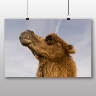 Big Box Art 'Camel No.3' Photographic Print