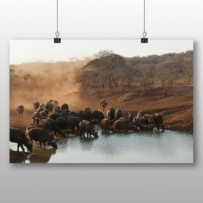 Big Box Art Buffalo No.2 Photographic Print on Canvas