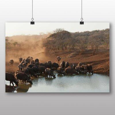 Big Box Art Buffalo No.2 Photographic Print