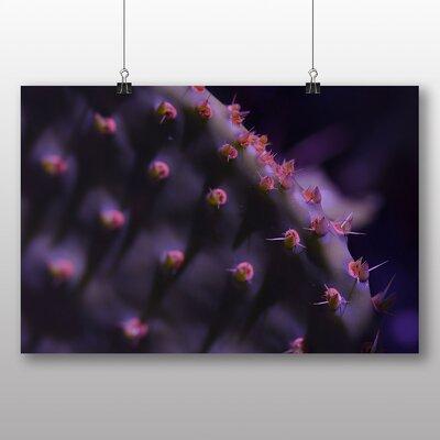 Big Box Art Cacti Cactus No.4 Photographic Print