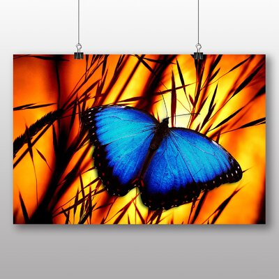 Big Box Art Butterfly No.6 Graphic Art Wrapped on Canvas