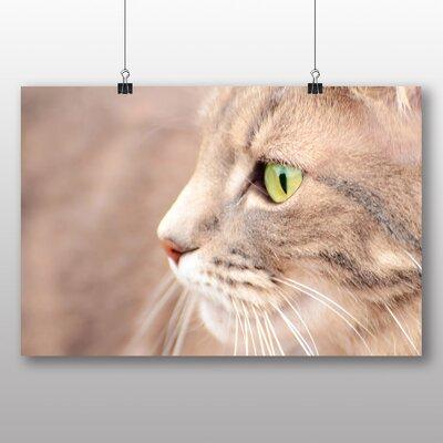 Big Box Art Cat Eyes No.7 Photographic Print on Canvas