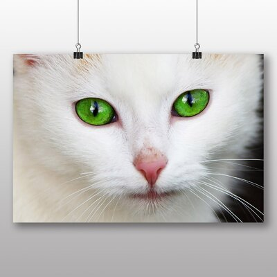 Big Box Art Cat Eyes No.1 Photographic Print on Canvas
