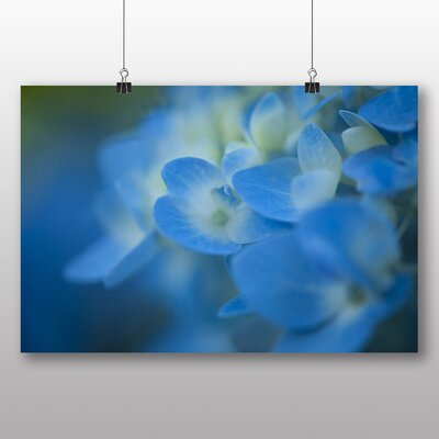 Big Box Art Blue Flower Hydrangea Photographic Print Wrapped on Canvas