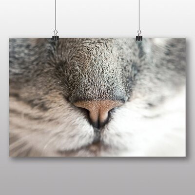 Big Box Art 'Cat Nose' Photographic Print