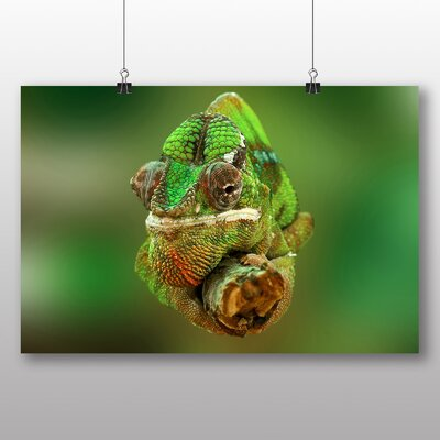 Big Box Art Chameleon Lizard Photographic Print on Canvas