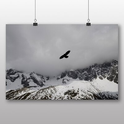 Big Box Art 'Bird in a Cloudy Sky' Photographic Print