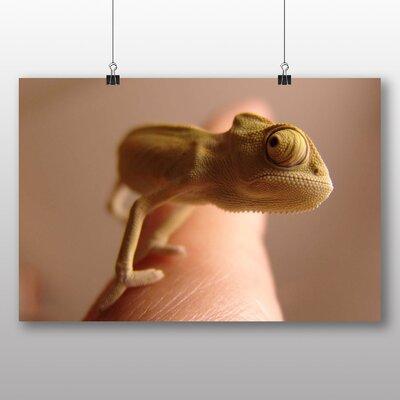 Big Box Art Chameleon No.5 Photographic Print