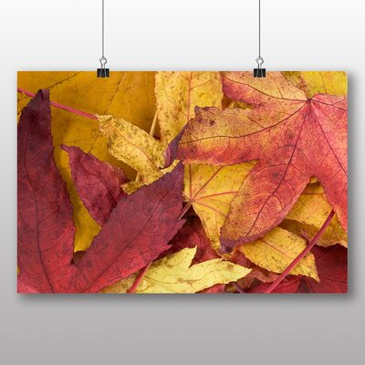 Big Box Art Autumn Leaves No.1 Photographic Print on Canvas