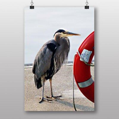 Big Box Art Heron Photographic Print on Canvas
