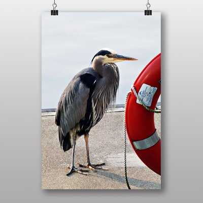Big Box Art Blue Heron Photographic Print