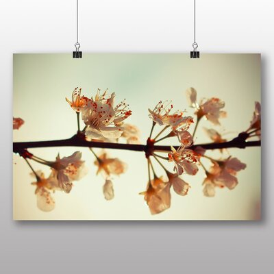 Big Box Art Blossom Tree No.2 Photographic Print Wrapped on Canvas