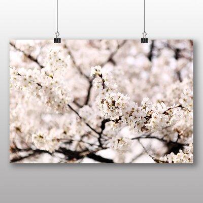 Big Box Art Cherry Blossom Sakura Tree Photographic Print on Canvas