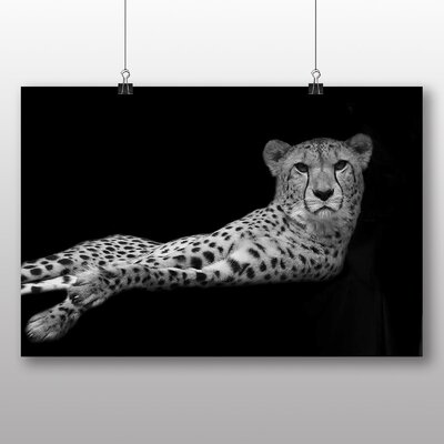 Big Box Art Cheetah No.3 Photographic Print on Canvas