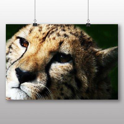 Big Box Art Cheetah No.6 Photographic Print on Canvas